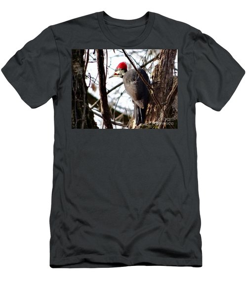 Warypileated Men's T-Shirt (Athletic Fit)