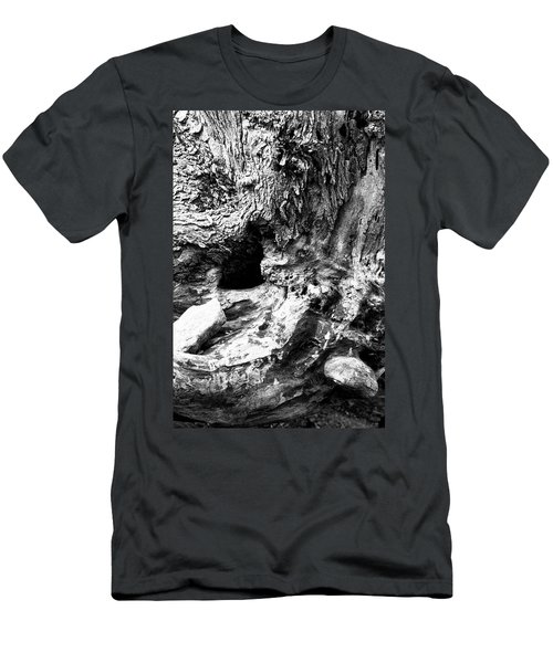 Weathered Stump Men's T-Shirt (Athletic Fit)