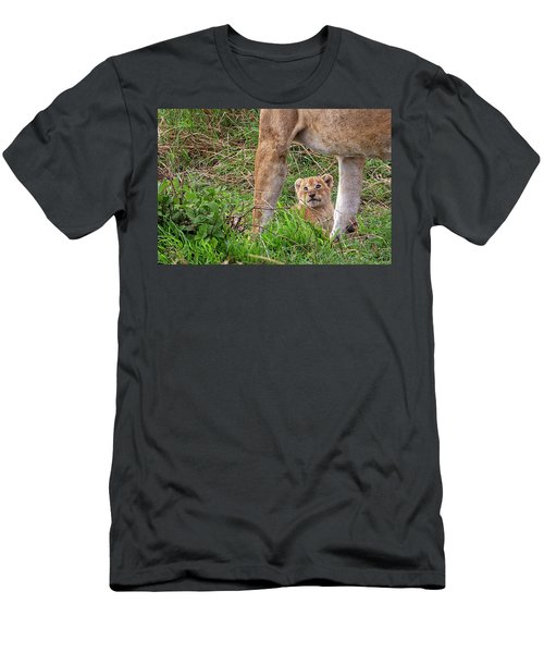 What Could Be Cuter Than A Baby Lion Cub? Men's T-Shirt (Athletic Fit)