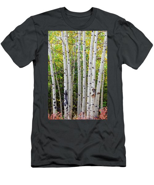 Men's T-Shirt (Athletic Fit) featuring the photograph White Bark Golden Forest by James BO Insogna
