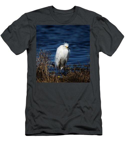 White Egret Men's T-Shirt (Athletic Fit)
