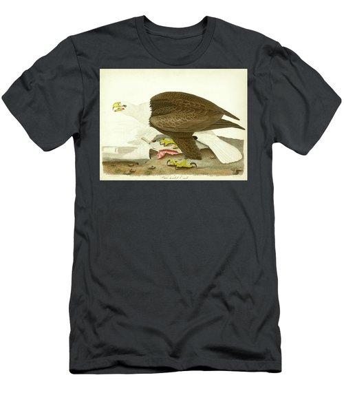 White-headed Eagle Men's T-Shirt (Athletic Fit)