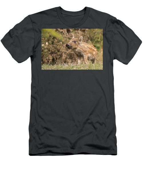Wild Boar Humbug Men's T-Shirt (Athletic Fit)