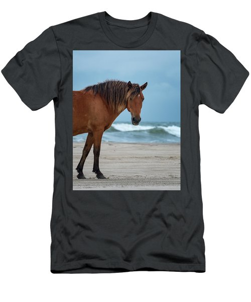 Wild Colonial Spanish Mustang Of Carova Stormy Skies Men's T-Shirt (Athletic Fit)