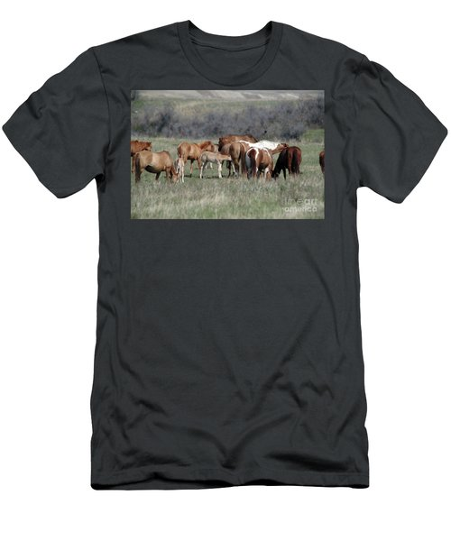 Wild Colts  Men's T-Shirt (Athletic Fit)
