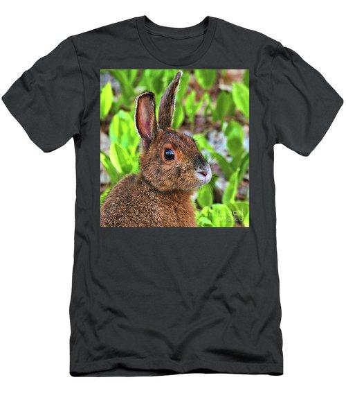 Wild Rabbit Men's T-Shirt (Athletic Fit)