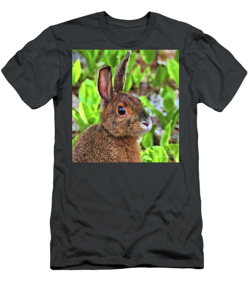Men's T-Shirt (Athletic Fit) featuring the photograph Wild Rabbit by Debbie Stahre