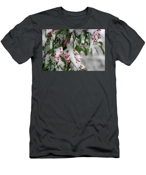 Winter Berries Men's T-Shirt (Athletic Fit)