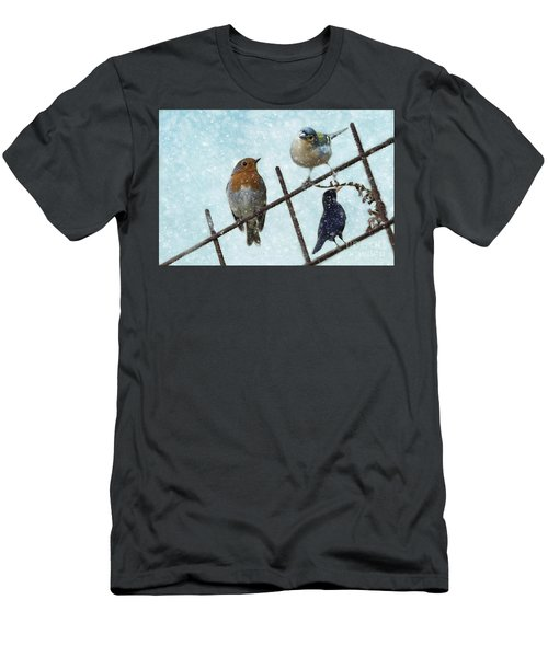 Winter Birds Men's T-Shirt (Athletic Fit)