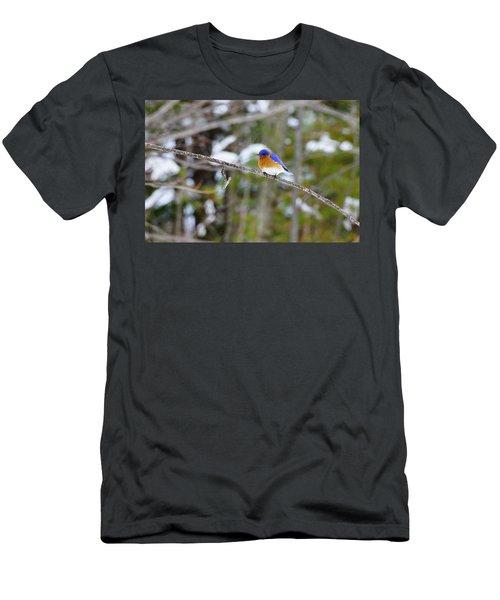 Winter Blue Men's T-Shirt (Athletic Fit)