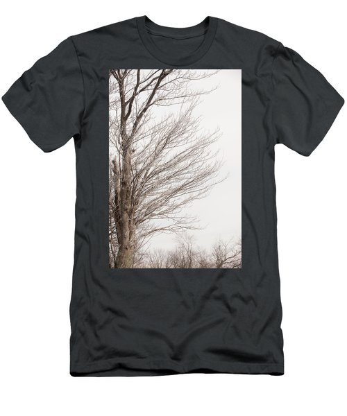 Winter Hoarfrost Men's T-Shirt (Athletic Fit)