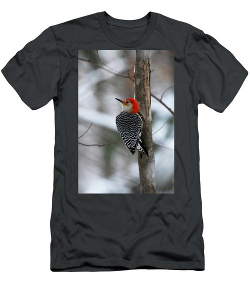 Winter Visitor Men's T-Shirt (Athletic Fit)
