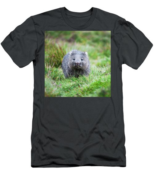 Wombat Men's T-Shirt (Athletic Fit)