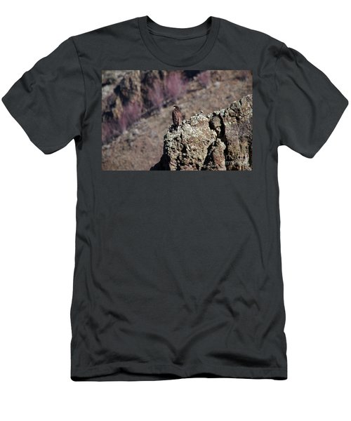 Young Eagle On The Rocks Men's T-Shirt (Athletic Fit)