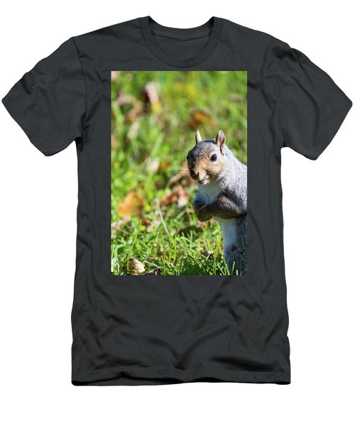 Your Friendly Neighborhood Squirrel Men's T-Shirt (Athletic Fit)