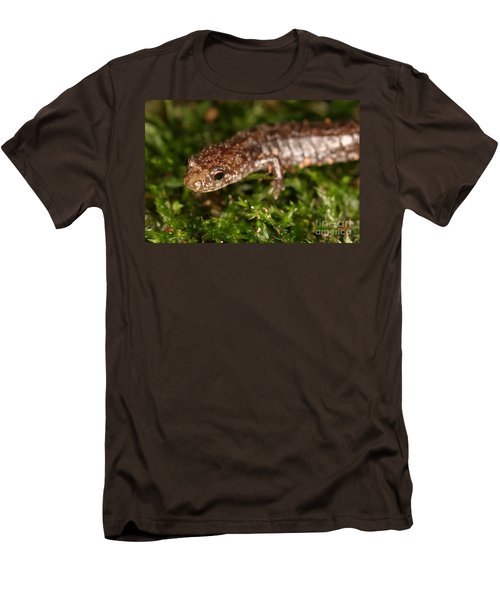 Red-backed Salamander Men's T-Shirt (Slim Fit) by Ted Kinsman