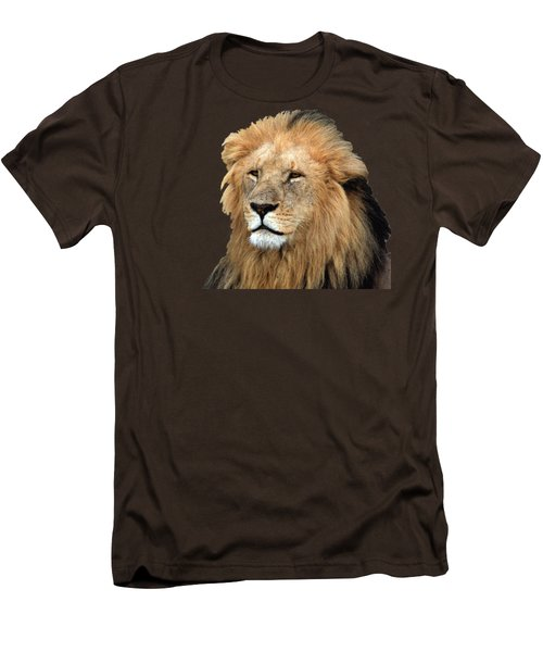 Masai Mara Lion Portrait    Men's T-Shirt (Slim Fit) by Aidan Moran