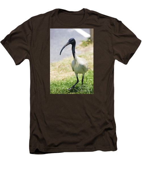 Carpark Ibis Men's T-Shirt (Slim Fit) by Jorgo Photography - Wall Art Gallery