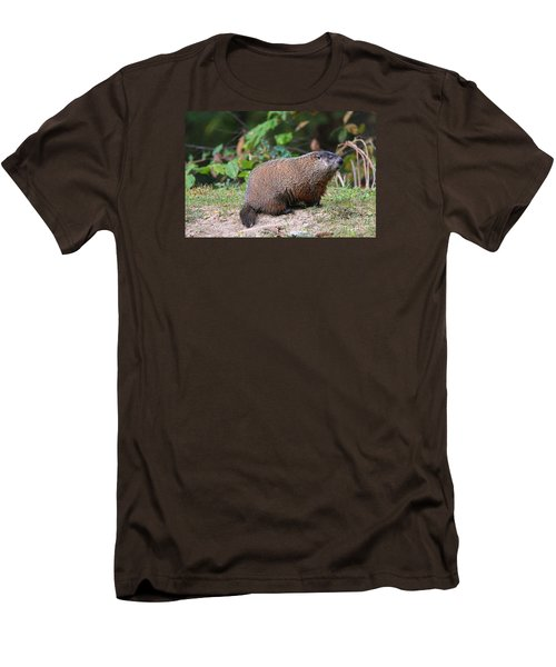Groundhog  0590 Men's T-Shirt (Slim Fit) by Jack Schultz