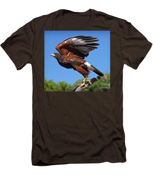 Men's T-Shirt (Slim Fit) featuring the photograph Harris's Hawk by Martin Konopacki