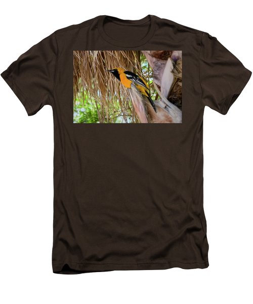 Male Hooded Oriole H17 Men's T-Shirt (Slim Fit) by Mark Myhaver