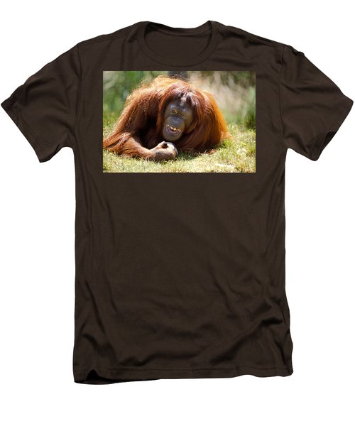 Orangutan In The Grass Men's T-Shirt (Slim Fit) by Garry Gay