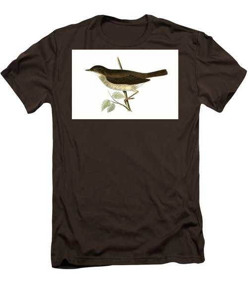 Thrush Nightingale Men's T-Shirt (Slim Fit) by English School