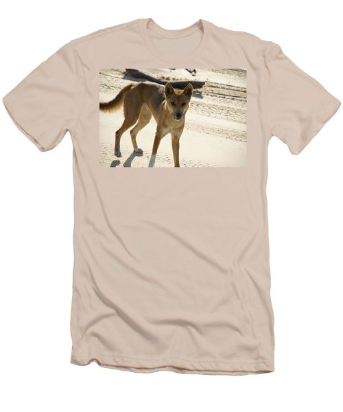 Dingo Men's T-Shirt (Slim Fit) by Carol Ailles