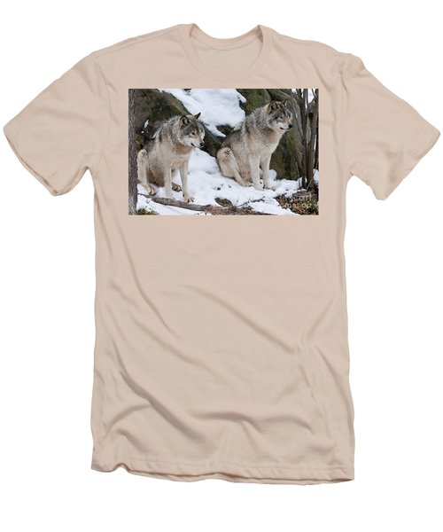 Timber Wolves Men's T-Shirt (Slim Fit) by Wolves Only