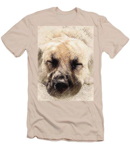 Snooze Men's T-Shirt (Athletic Fit)