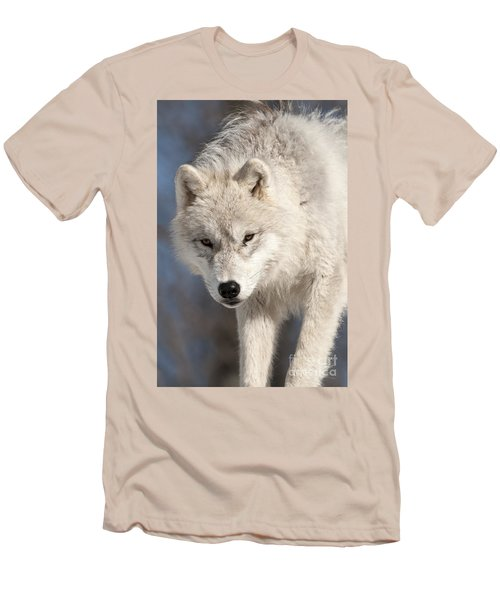 Arctic Wolf Pup Men's T-Shirt (Slim Fit) by Wolves Only