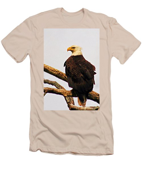 Men's T-Shirt (Slim Fit) featuring the photograph An Eagle's Perch by Polly Peacock