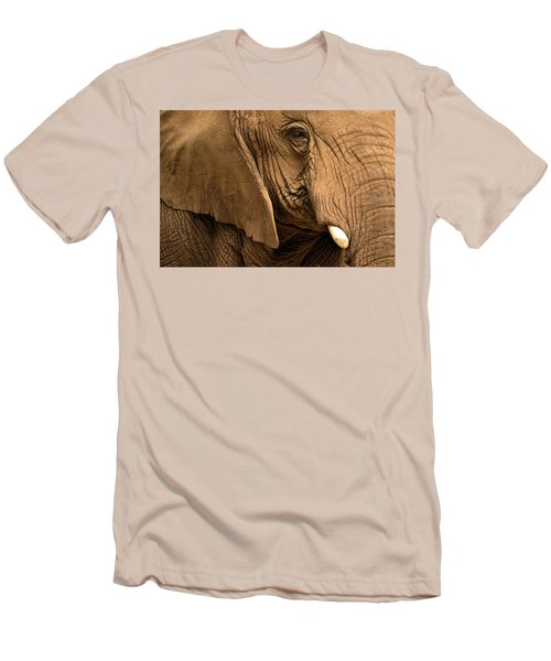 An Elephant's Eye Men's T-Shirt (Athletic Fit)