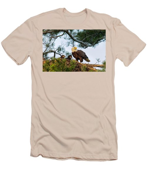 Bald Eagle With Eaglets  Men's T-Shirt (Athletic Fit)