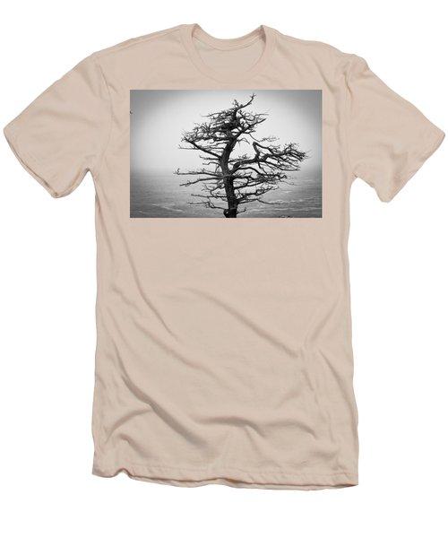 Bare Cypress Men's T-Shirt (Slim Fit) by Melinda Ledsome