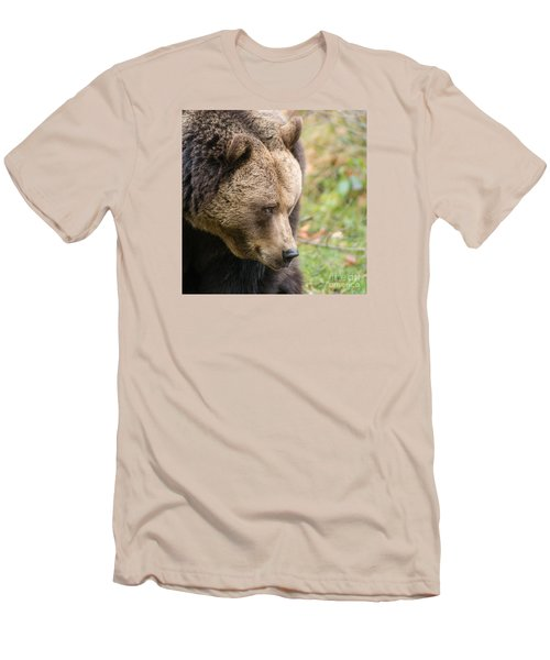 Bear's Profile Men's T-Shirt (Athletic Fit)