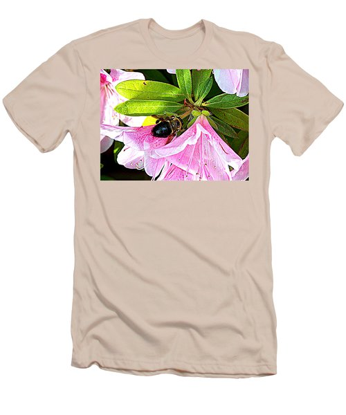 Bee On  Pink Azalea Men's T-Shirt (Slim Fit) by Kathy  White