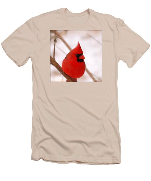 Men's T-Shirt (Slim Fit) featuring the photograph Big Red  Cardinal Bird In Snow by Peggy Franz