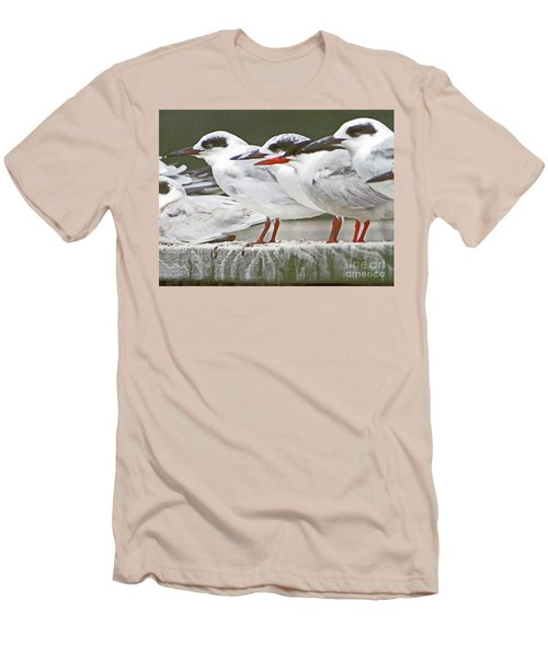 Birds On A Ledge Men's T-Shirt (Athletic Fit)