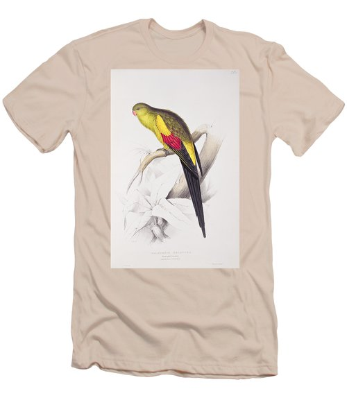 Black Tailed Parakeet Men's T-Shirt (Athletic Fit)