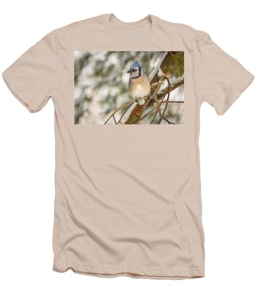 Blue Jay Men's T-Shirt (Slim Fit) by Everet Regal