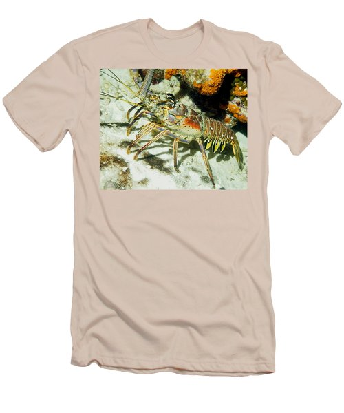 Caribbean Spiny Reef Lobster  Men's T-Shirt (Athletic Fit)