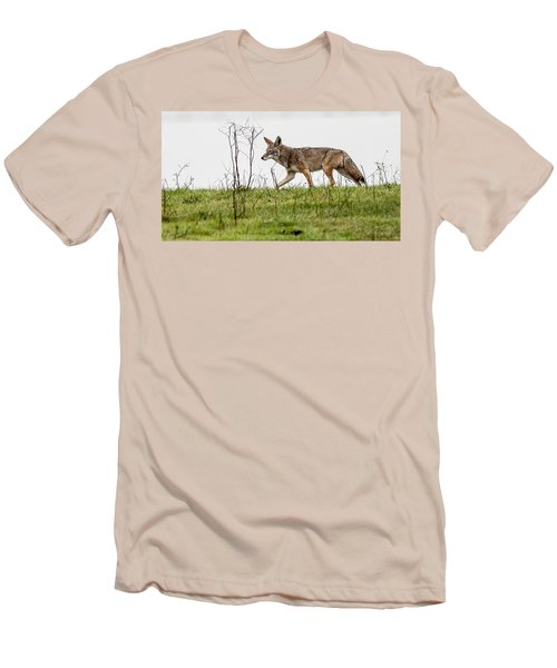 Coyote Men's T-Shirt (Slim Fit) by Brian Williamson