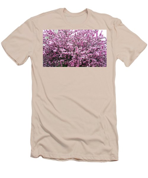 Crab Apple Tree Men's T-Shirt (Slim Fit) by Aimee L Maher Photography and Art Visit ALMGallerydotcom