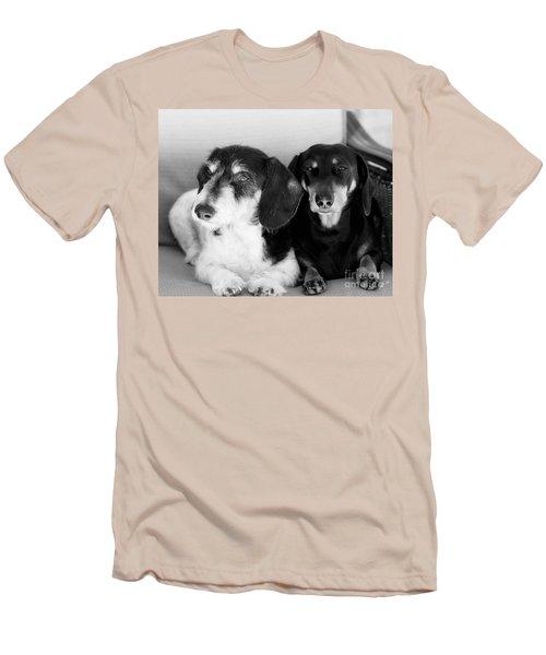 Dapper Doxies Men's T-Shirt (Slim Fit) by Erika Weber