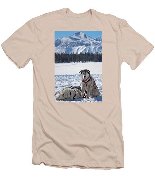 Dog Team Men's T-Shirt (Athletic Fit)