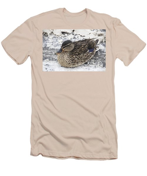 Duck Setting On A Winter Road Men's T-Shirt (Athletic Fit)