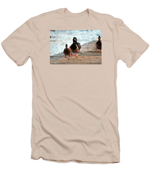 Duck Walk Men's T-Shirt (Slim Fit) by David Jackson