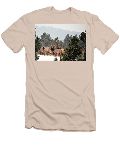 Men's T-Shirt (Slim Fit) featuring the photograph Elk In The Snowing Open by Barbara Chichester