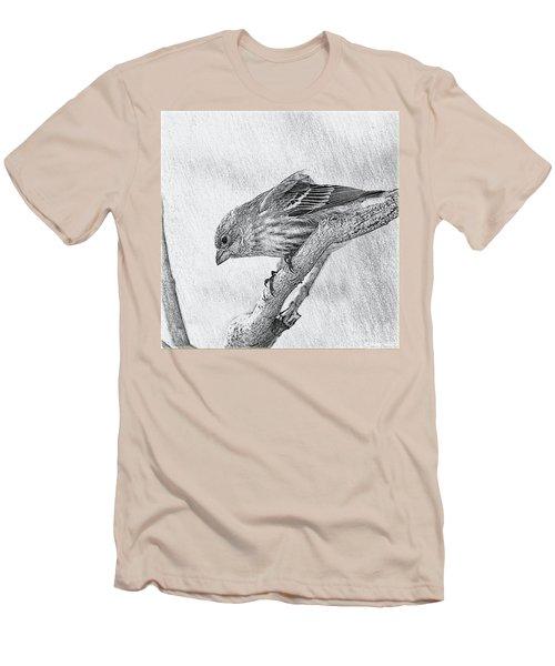 Finch Digital Sketch Men's T-Shirt (Athletic Fit)